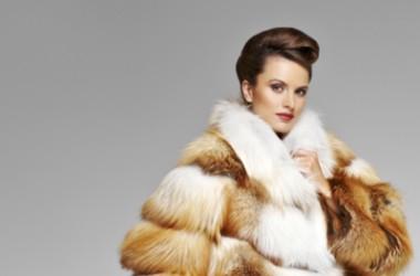 Oscar Collezioni Style, сеть салонов